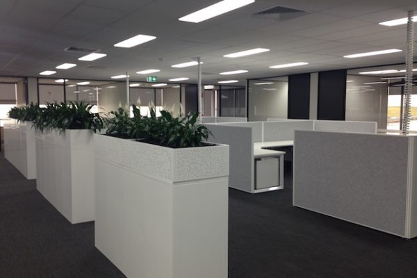 Paragon_Care_Office_Fitout_Electrical1